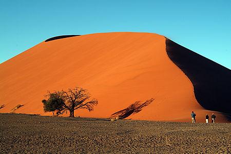dune45_view