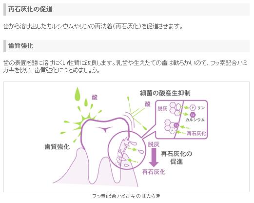 日常 ライオン 歯磨き粉 フッ素の効能
