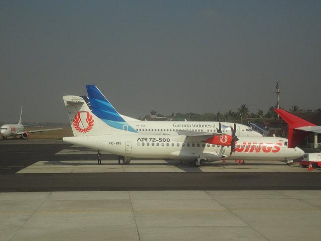 3 Wing (5)