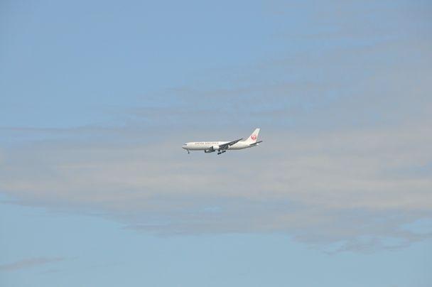 成田 飛行機写真 (14)