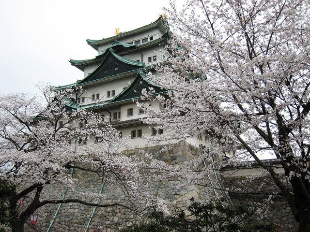 名古屋の桜 2008 054s