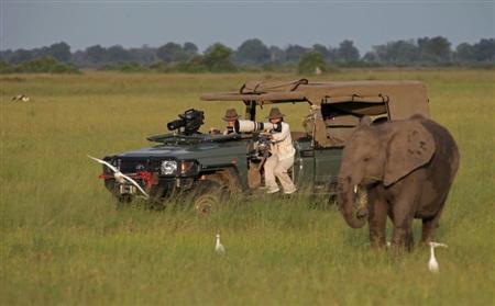 エボラ 観光客減少1