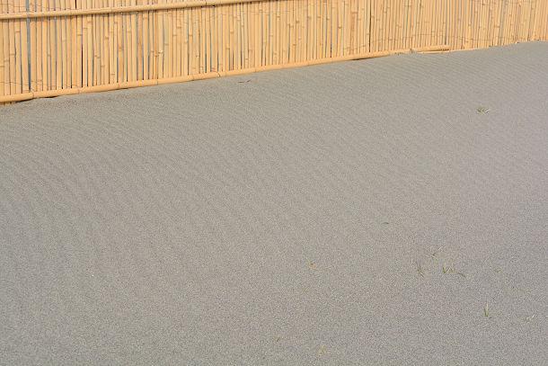 砂丘 (11)