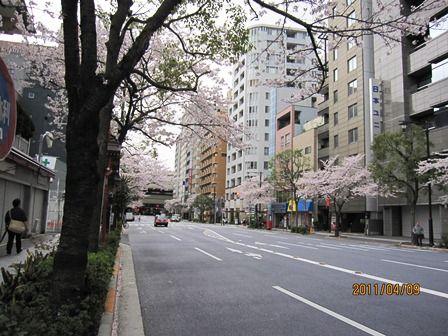2011年 東京 004