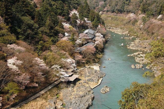 京都の桜 2008 447s