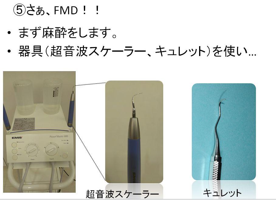 FMD12