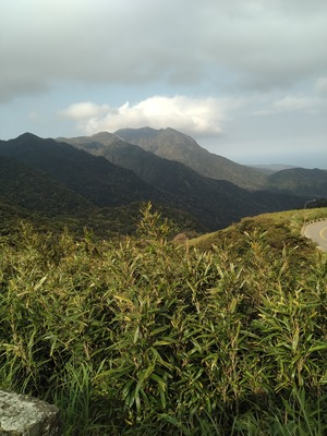 陽明山(ヤンミンシャン)今旅のメイン