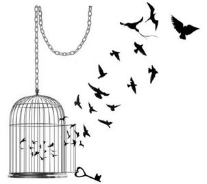 cagebird2