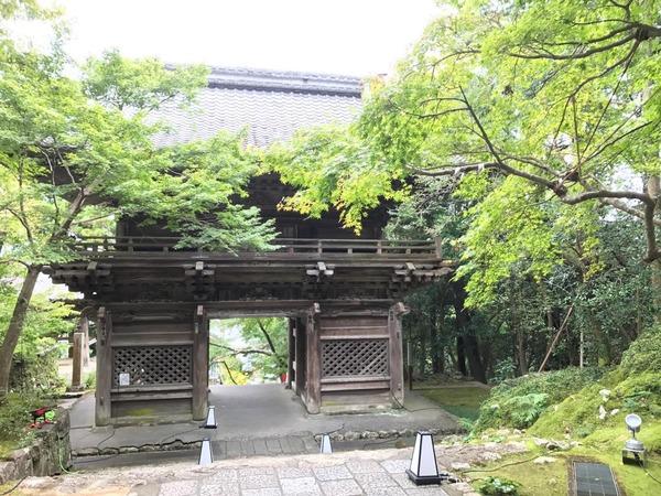 31番竹林寺2