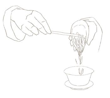 蓋碗に茶葉を入れる