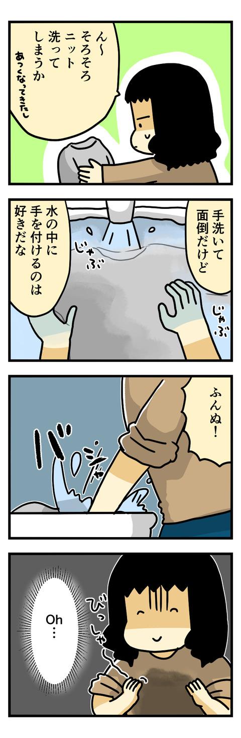 ニット洗う