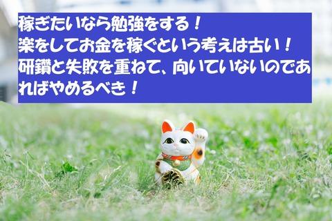 manekineko0I9A0247_TP_V