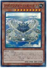 card100020263_1