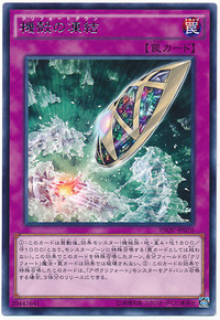 card100038248_1