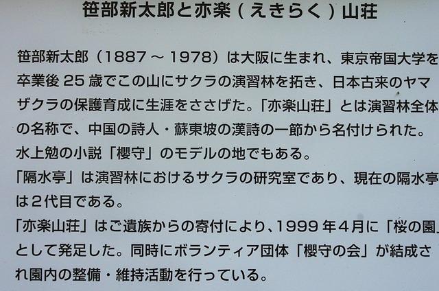 IMGP3638 (2)