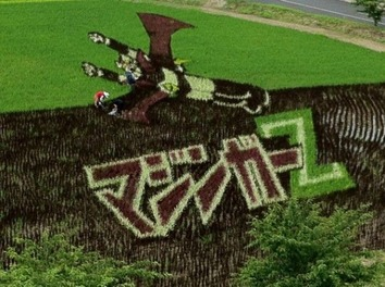 rice-patty-art-4-e1373259401669