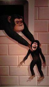monkeyft