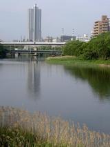 タワービル