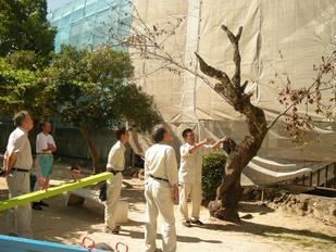 ありし日2008
