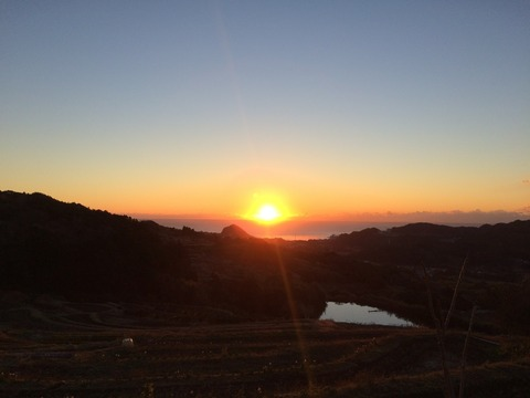 blog_IMG_7653