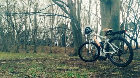 【MTB購入】自転車に乗って感じた事(バイク比)