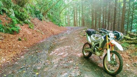 林道とWR250R