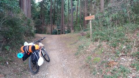 森への入り口