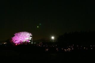 120407-yozakura03
