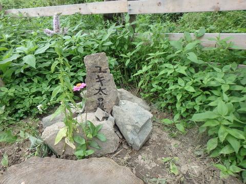 子ヤギの墓