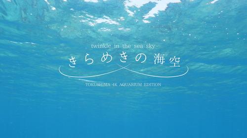きらめきの海空_石井友規01