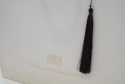 ガリャルダガランテ2