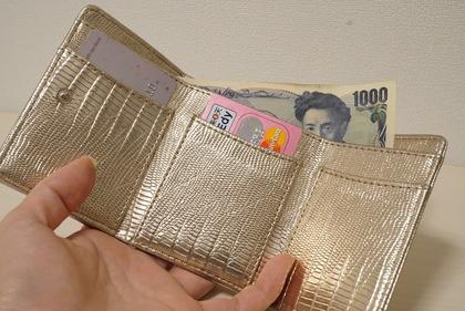 dinosリップモチーフミニ財布 (29)