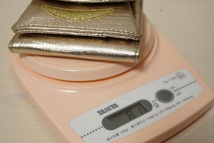 dinosリップモチーフミニ財布 (8)