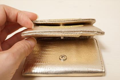 dinosリップモチーフミニ財布 (16)