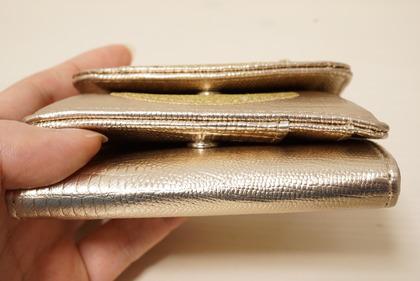 dinosリップモチーフミニ財布 (15)