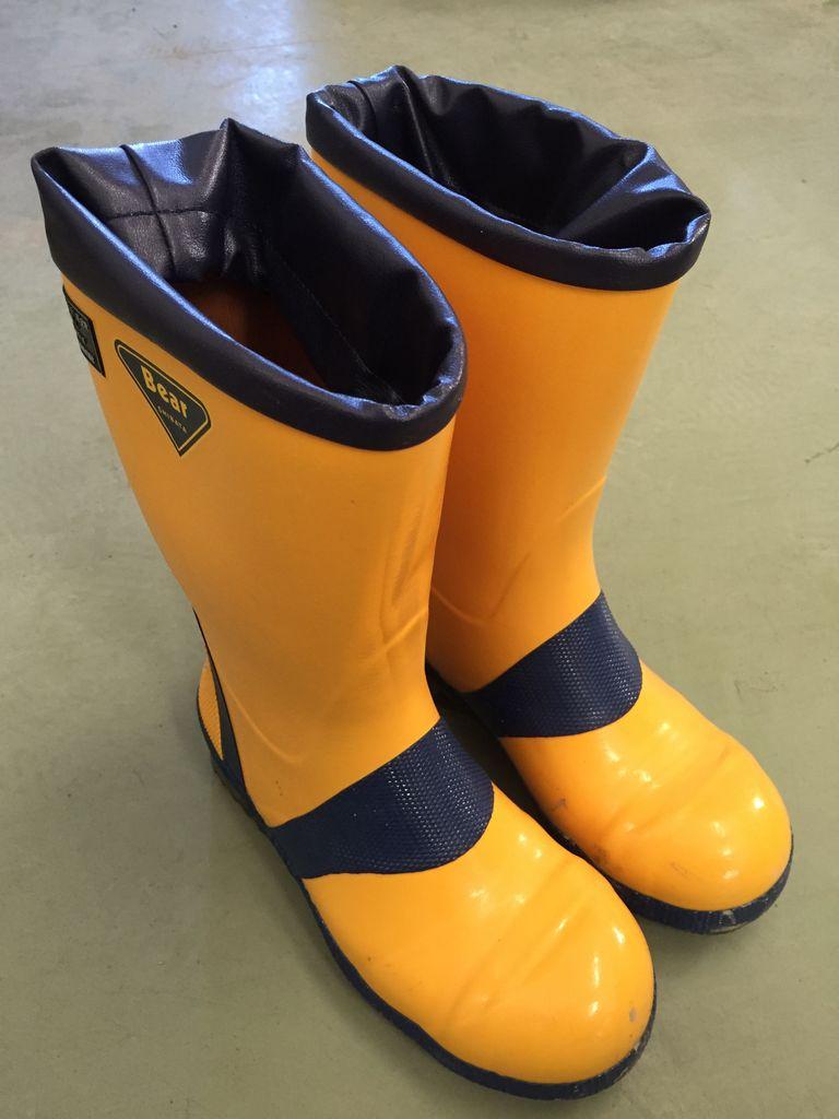 ... だるま日記 : 女性用の安全靴
