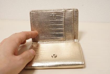dinosリップモチーフミニ財布 (17)