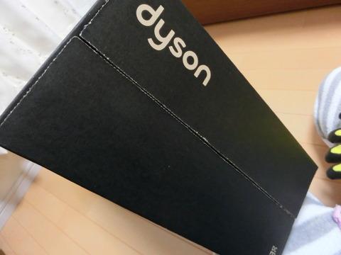 ダイソンDC45 (12)