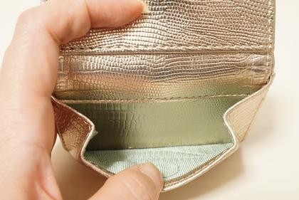 dinosリップモチーフミニ財布 (14)
