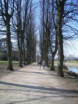 城公園の道