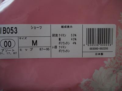 P8100897