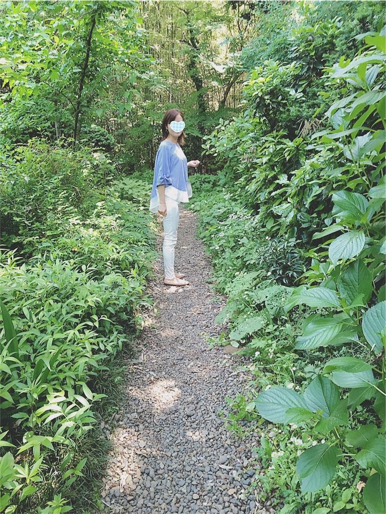 f:id:yukiko_tea:20160518102224j:image