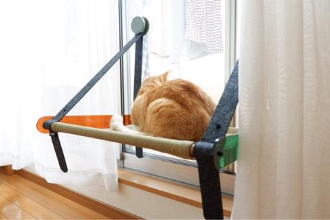 拭くだけ簡単!窓と網戸がピッカピカ→ネコの窓ベッドを付けてみた