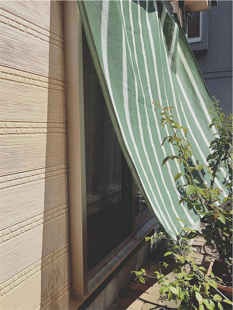 f:id:yukiko_tea:20160804111239j:image