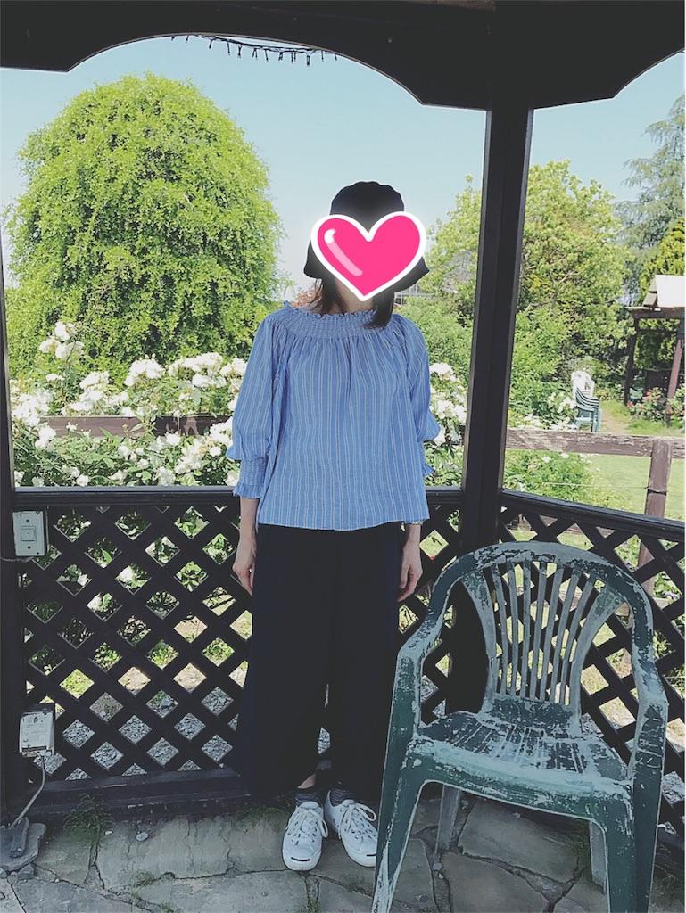 f:id:yukiko_tea:20170522110032j:image