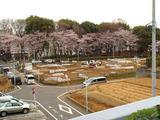 区民農園2010.04.04.jpg