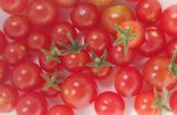 マイクロトマト2013.07.19