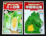 半結球山東菜 ミニハクサイ.jpg