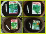 種蒔き2012.10.06