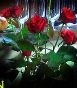 M子さんのバラ